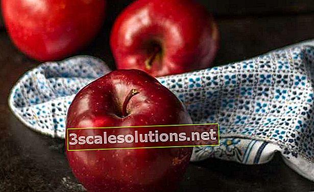 Scopri i benefici della mela