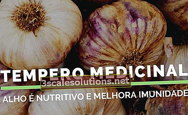 Dieci benefici per la salute dell'aglio