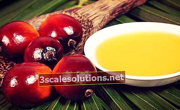 L'olio di palma, chiamato anche olio di palma, ha diverse applicazioni