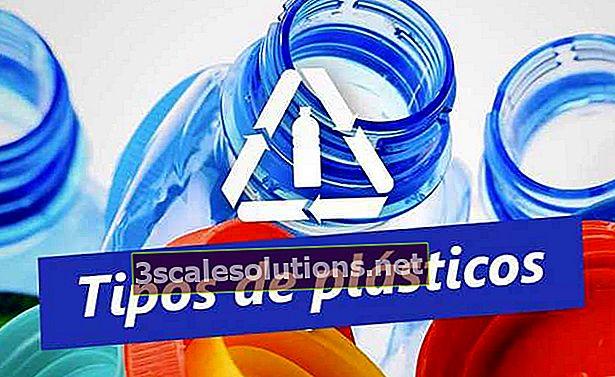 Conosci i tipi di plastica