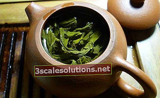Tè verde: benefici ea cosa serve