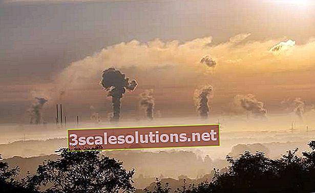 Crediti di carbonio: cosa sono?