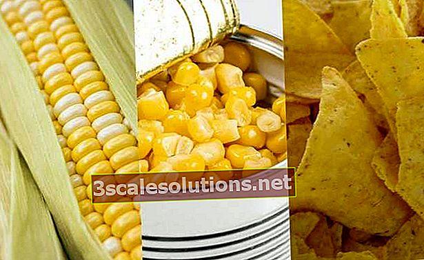 Cosa sono gli alimenti freschi, trasformati e ultra elaborati