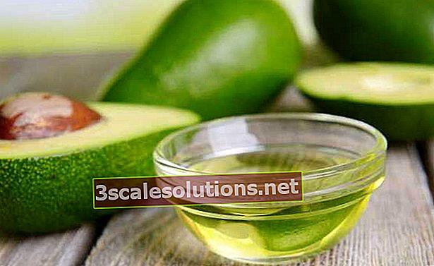 Olio di avocado: benefici e usi