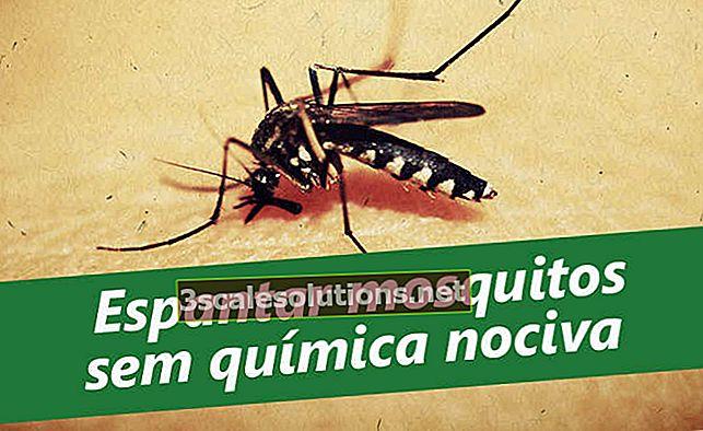 Come uccidere le zanzare naturalmente