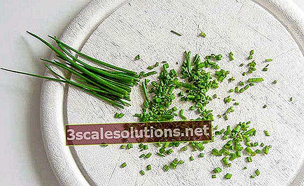 Proprietà dell'erba cipollina e loro benefici per la salute