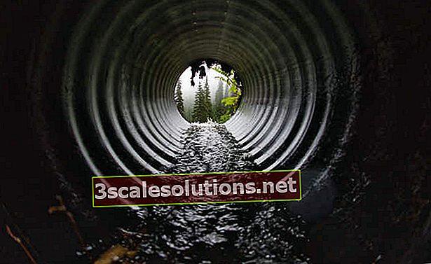 Inquinamento idrico: tipologie, cause e conseguenze