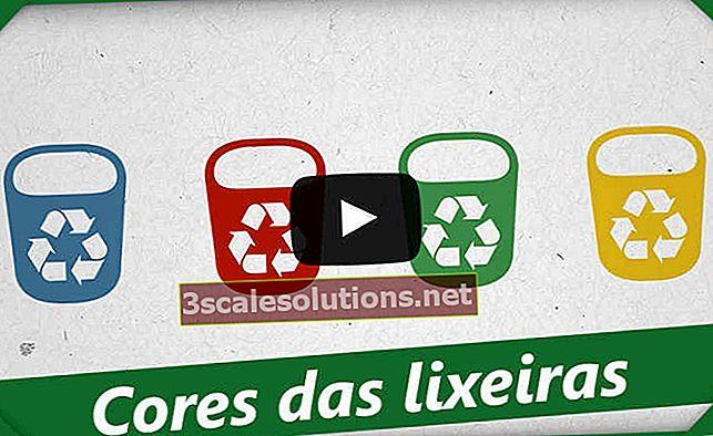 Colori raccolta selettiva: riciclaggio e loro significati