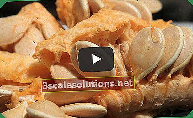 Sette benefici per la salute dei semi di zucca