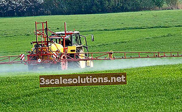Cosa sono i pesticidi?